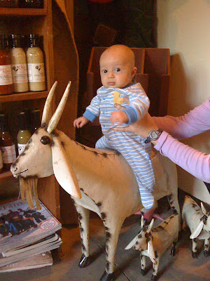 baby riding goat