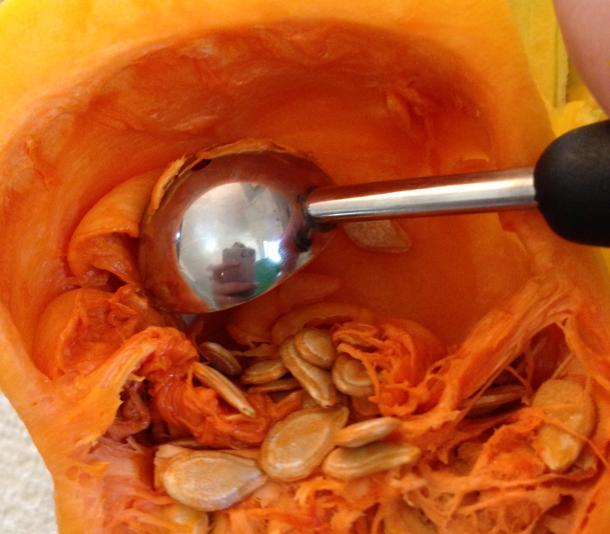 melon scraper butternut squash
