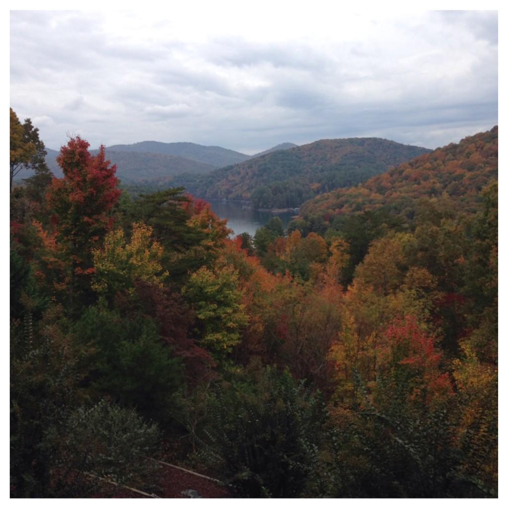 blue ridge fall leaves