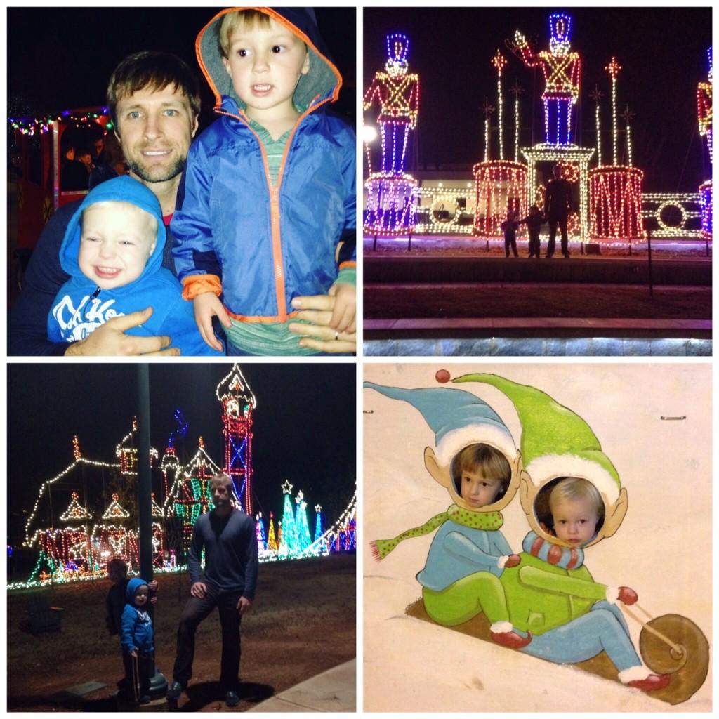 lights of life 2015