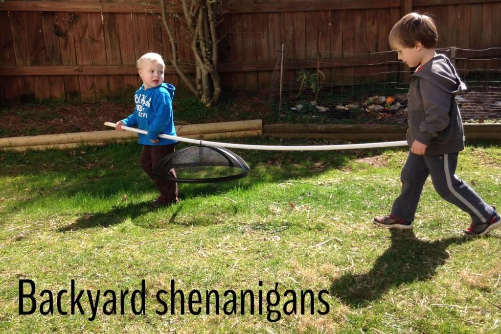 boys back yard