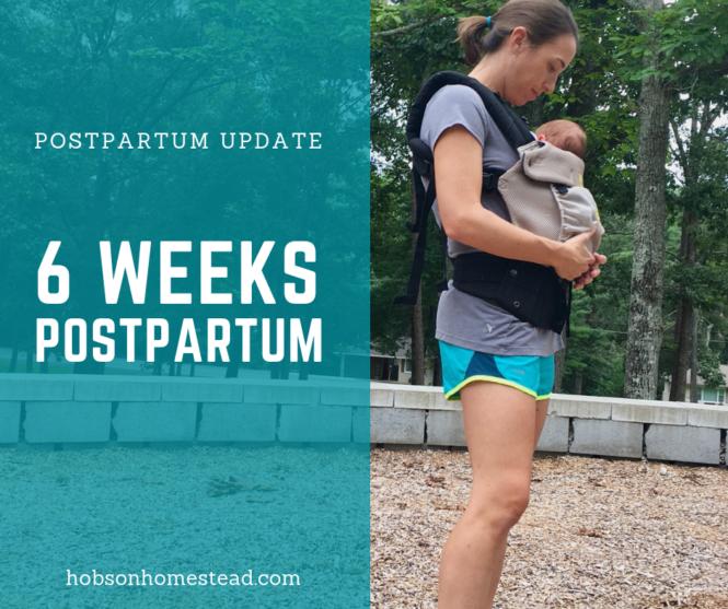 6 weeks postpartum