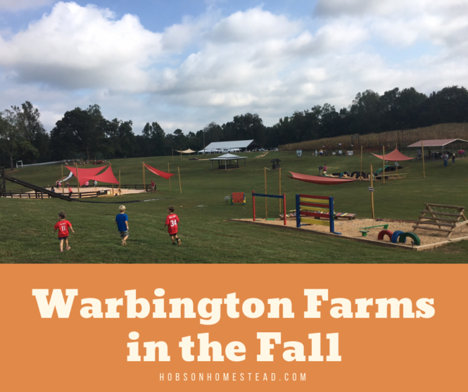 Warbington Farms in the Fall