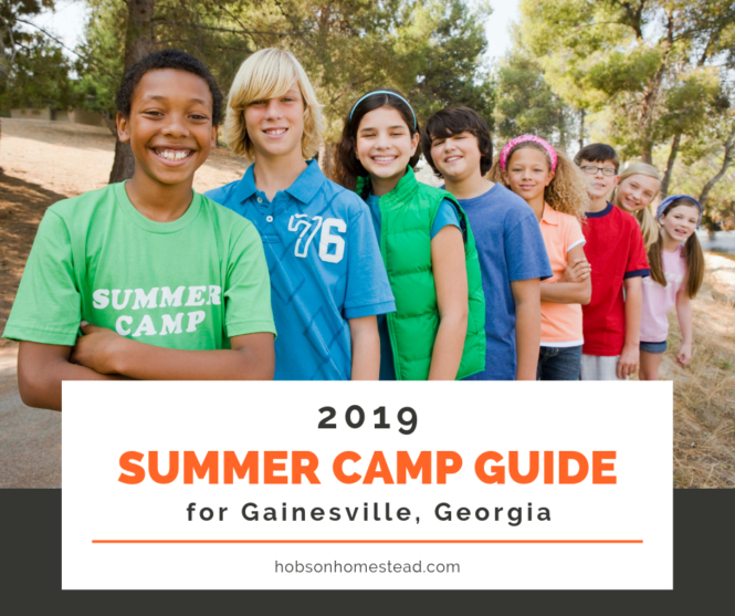 2019 summer camp guide gainesville, georgia