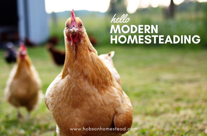 modern homesteading