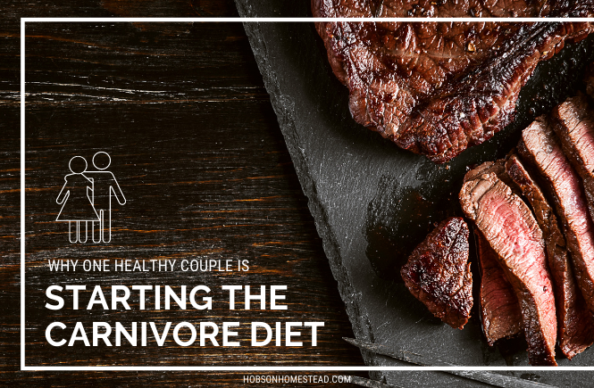 starting the carnivore diet